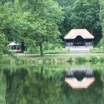 Volkspark Jungfernheide. Instandsetzung Uferpavillon