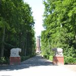 Volkspark Jungfernheide. Bärenfiguren und Wasserturm