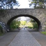 Volkspark Rehberge. Hauptachse zur zentralen Übungswiese